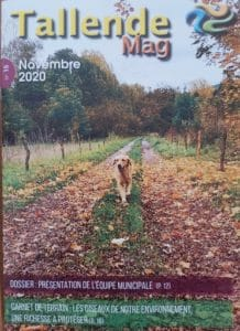 Tallende Mag – Novembre 2020